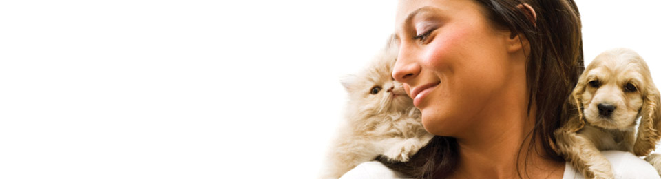 General Image - Kitten and Puppy with Woman